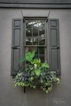 gray-house-window-box-greenery