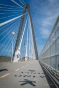 ravenal-bridge-walking-path