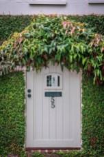 white-door-ivy-greenery