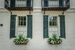 windowbox-charleston-flowers-greenery-shutters