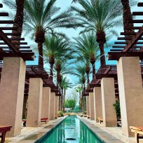 palm-trees-spa-water-fountain