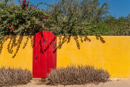 baja-red-door-yellow-wall-bougainvillea