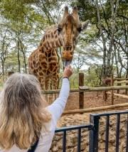 kim-feeding-giraffe