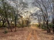 great-walk-africa-day-2-3-4-35