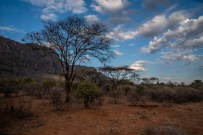 great-walk-africa-day-2-3-4-44