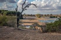 great-walk-africa-day-8-11