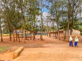 Nungwi-zanzibar-paige-shaw-September 14, 2021-4