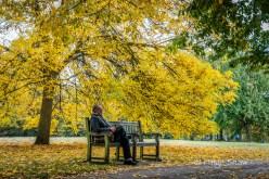 Parkside in Hyde Park