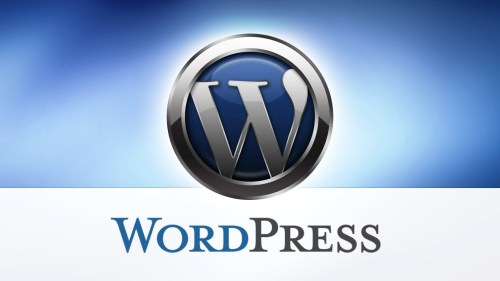 How to Start A WordPress Blog on Qservers_WPace
