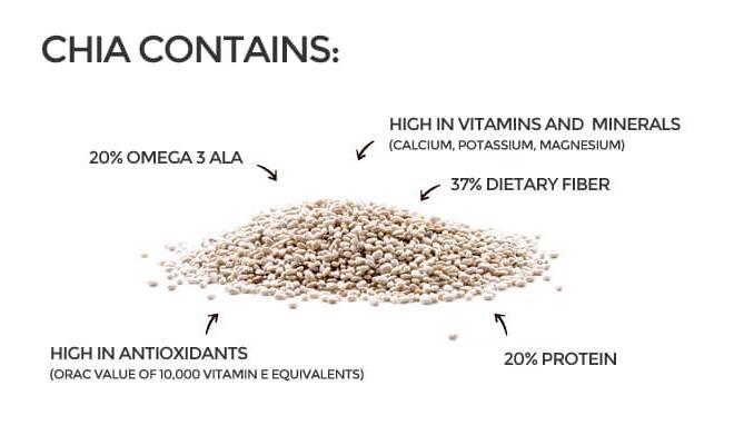 Chia Seeds Benefits