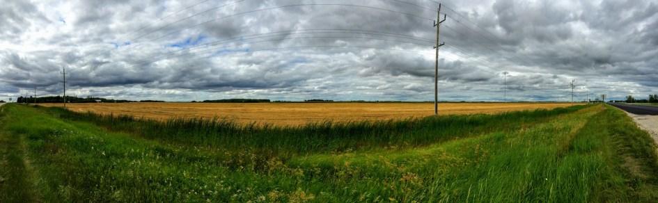 Manitoba landscape