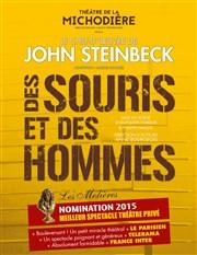 Des Souris Et Des Hommes : souris, hommes, Souris, Hommes, Théâtre, Michodière, BilletReduc.com