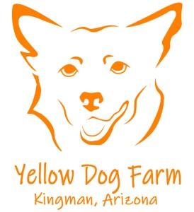 yellow dog farm kingman