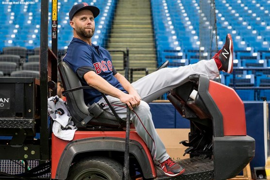 ST. PETERSBURG, FL - MARCH 28: Dustin Pedroia #15 of the Boston Red Sox looks on during a team workout before Opening Day on March 28, 2018 at Tropicana Field in St. Petersburg, Florida . (Photo by Billie Weiss/Boston Red Sox/Getty Images) *** Local Caption *** Dustin Pedroia