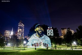 BOSTON, MA - SEPTEMBER 30: An image of David Price #24 of the Boston Red Sox is projected onto trees on Boston Common on September 30, 2018 in Boston, Massachusetts. (Photo by Billie Weiss/Boston Red Sox/Getty Images) *** Local Caption *** David Price