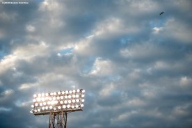 BOSTON, MA - AUGUST 7: The light tower is shown against the clouds before a game between the Boston Red Sox and the Toronto Blue Jays on August 7, 2020 at Fenway Park in Boston, Massachusetts. The 2020 season had been postponed since March due to the COVID-19 pandemic. (Photo by Billie Weiss/Boston Red Sox/Getty Images) *** Local Caption ***