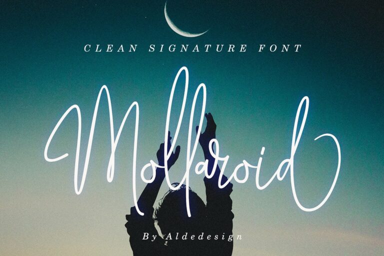 Preview image of Mollaroid