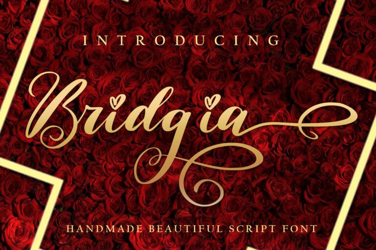 Preview image of Bridgia
