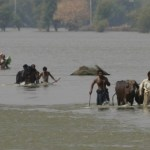 Millions Displaced After Monsoon Floods Hit India, Nepal and Bangladesh