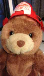 Fire Prevention Month Safety Tips Fire Bear