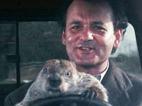 Groundhogs are squirrels William Lawrence Sr Omnibit 2-1-20