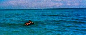 Raft(2)
