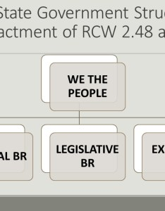 Wa state government structure pre gov chart also the of by numbers social justice initiative rh socialjusticeinitiativewa