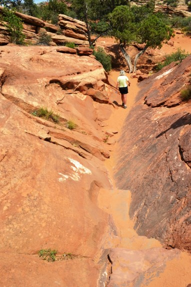 Red Rock Path