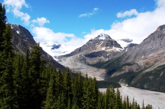 Peyto Glacier, Icefields Parkway