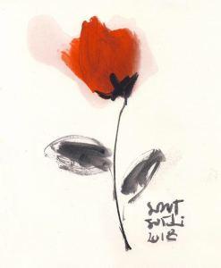 Sant Jordi rose by Oscar Astromujoff