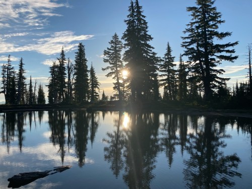 A picture containing outdoor, tree, sky, water  Description automatically generated
