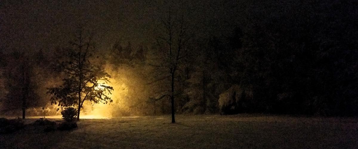 January Night