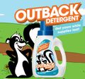 Outback Detergent: Free Detergent Offer From Subaru