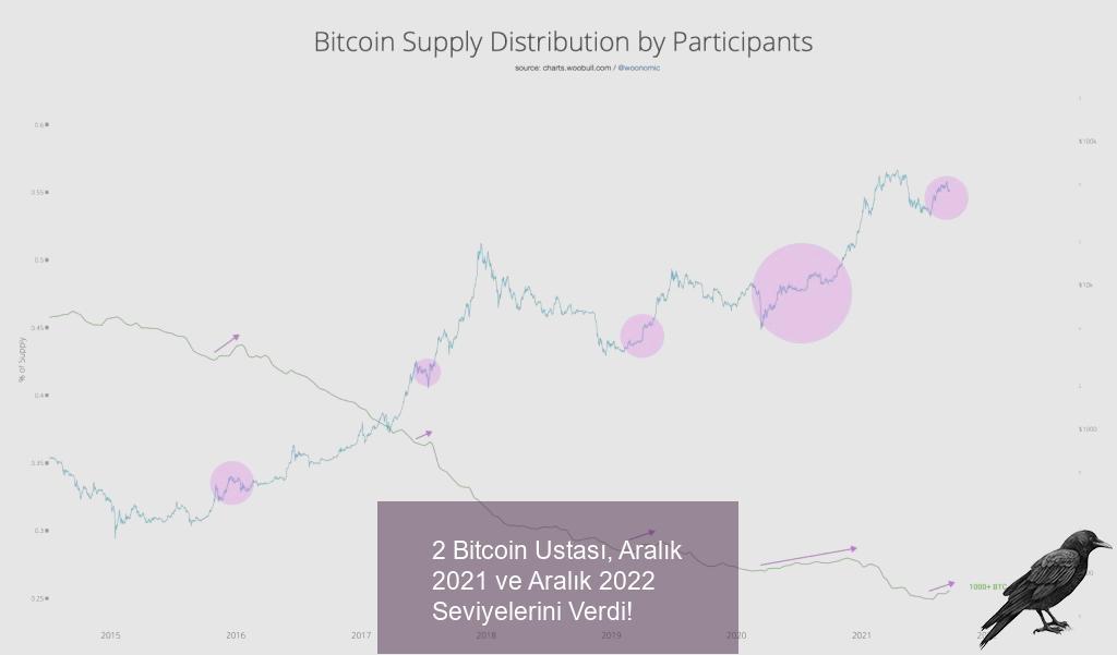 2 bitcoin ustasi aralik 2021 ve aralik 2022 seviyelerini verdi 3 ajs8hgyj