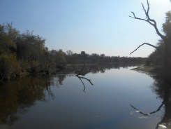 Lake Panic Bird Hide - near Skukuza