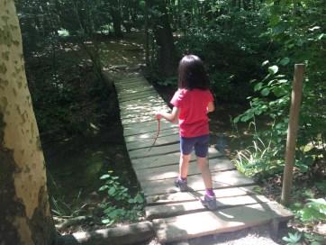 Francesca percorre il ponte sospeso