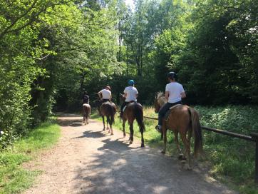 amici che vanno a cavallo nel parco a Montevecchia