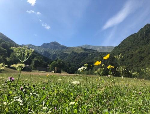 Passeggiate in Valsassina con bambini