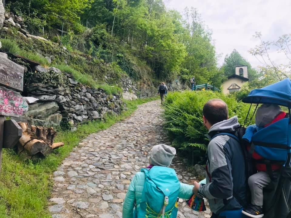 Bosco Co Vivo a Dazio Morbegno Valtellina