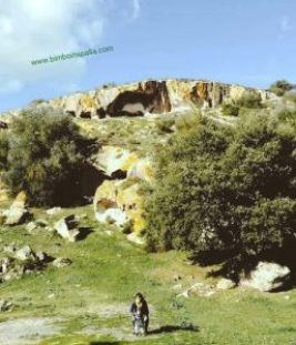 archeologia Ittireddu necropoli di Partulesi