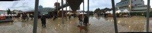Panoramica del Parco della Musica