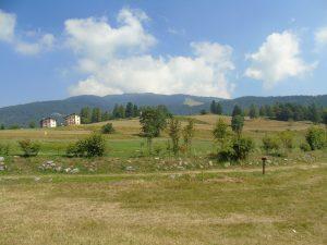 foto Trentino immagini