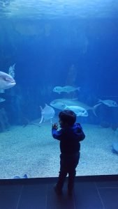 divertimento in Sardegna per bambini