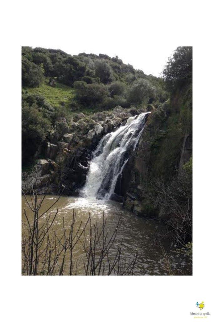 cascate di triulintas in primavera