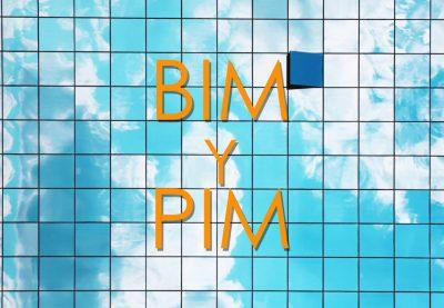 Webinar ASEFAVE - BIM y PIM