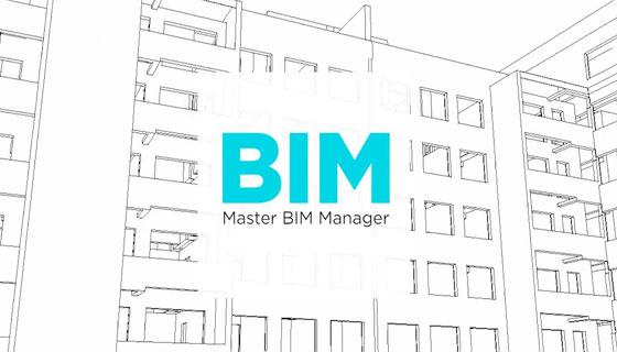 Job for BIM Manager in Dublin
