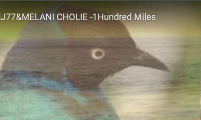 SERGEJ77&MELANI CHOLIE -1Hundred Miles