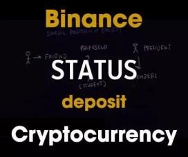 Kiểm Tra Tình Trạng Nạp Coin Vào Binance Mà Chưa Thấy Có Coin Trong Tài Khoản -