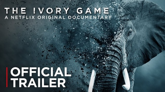 The Ivory Game | Official Trailer [HD] | Netflix - YouTube