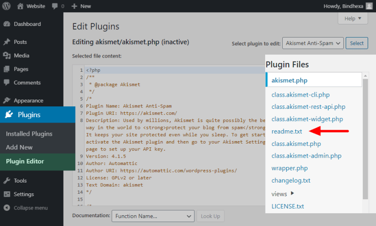 Plugin Files of a plugin on Plugin Editor page